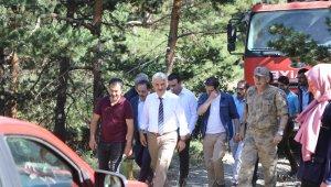Erzincan'da ormanlık alanda çıkan örtü yangını söndürüldü