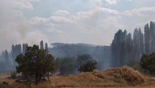 Uşak'ta çıkan yangına havadan müdahale ediliyor