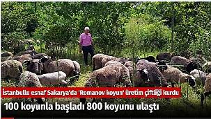 İstanbullu esnaf Sakarya'da 'Romanov koyun' üretim çiftliği kurdu