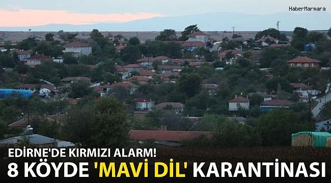 Edirne'de Kırmızı Alarm! 8 Köyde 'Mavi dil' Karantinası Başlatıldı
