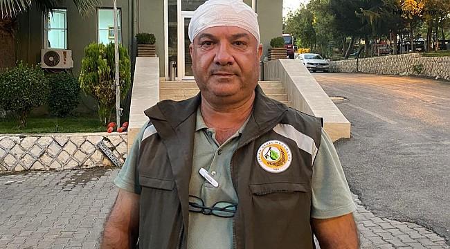 Mardin'de kaçak ağaç kesimi yapan kişiler, orman görevlilerini darp etti