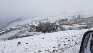 Ordu'da mevsimin ilk kar yağışı