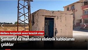 Şanlıurfa'da mahallenin elektrik kablolarını çaldılar
