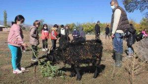 Erzincan'da minik öğrenciler çiftlikteki doğal yaşamı yerinde gördü