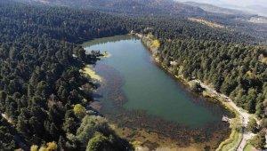 Gölcük Tabiat Parkı'nda sonbahar güzelliği mest etti