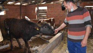 """Manda üreticisinden çağrı: """"Zonguldak için en büyük yatırım tarım"""""""