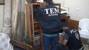 Şanlıurfa'da FETÖ'nün güncel yapılanmasına operasyon: 6 gözaltı